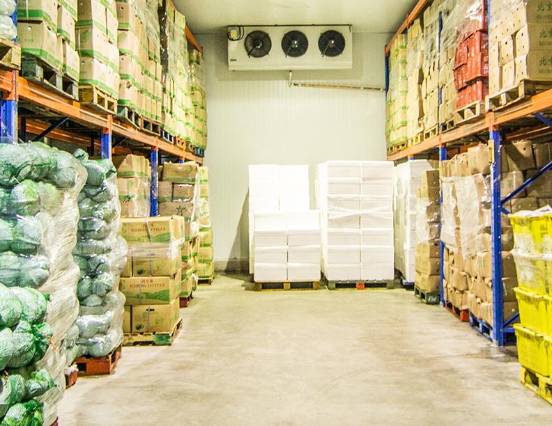 Design Of Cold Storage For Fruits  U0026 Vegetables