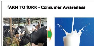 Farm To Fork Cold Chain In India – Consumer Awareness | Food Safety